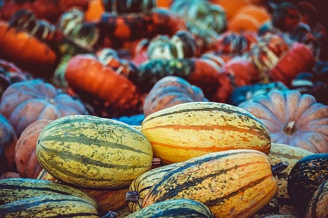 Pourquoi manger des fruits et légumes de saison ?
