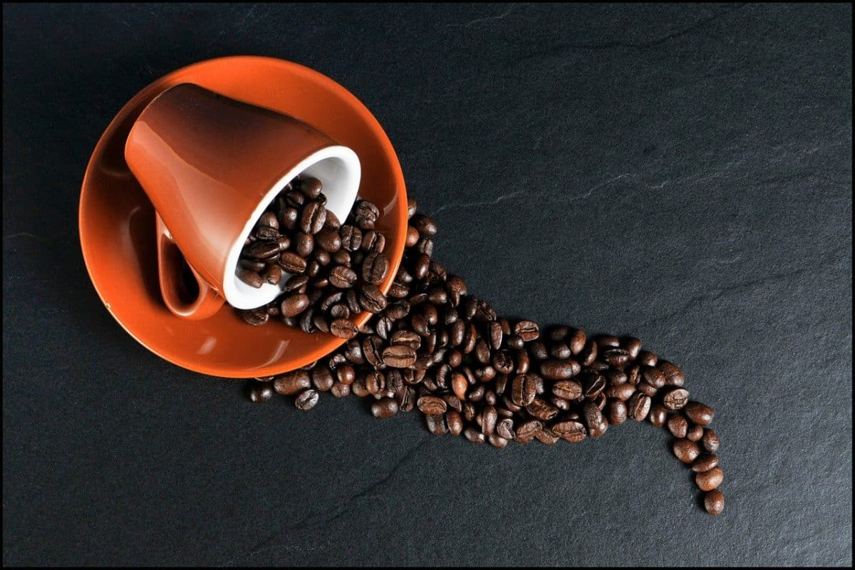 Des grains de café et une tasse