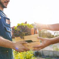 Épicerie bio : les essentiels à avoir dans sa cuisine