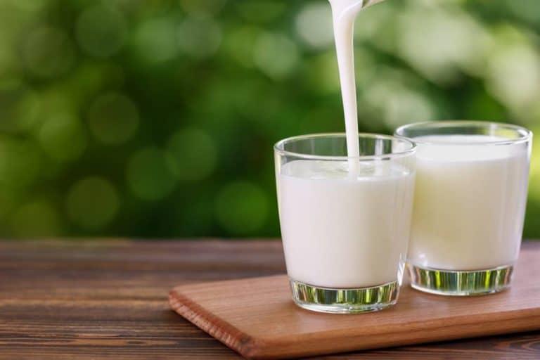 Idées recettes yaourts