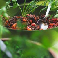 Lentilles au Cookeo : comment les cuire à la perfection ?